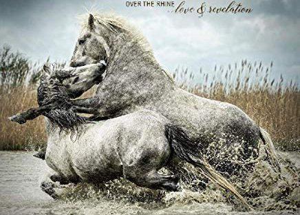 over-the-rhine-love