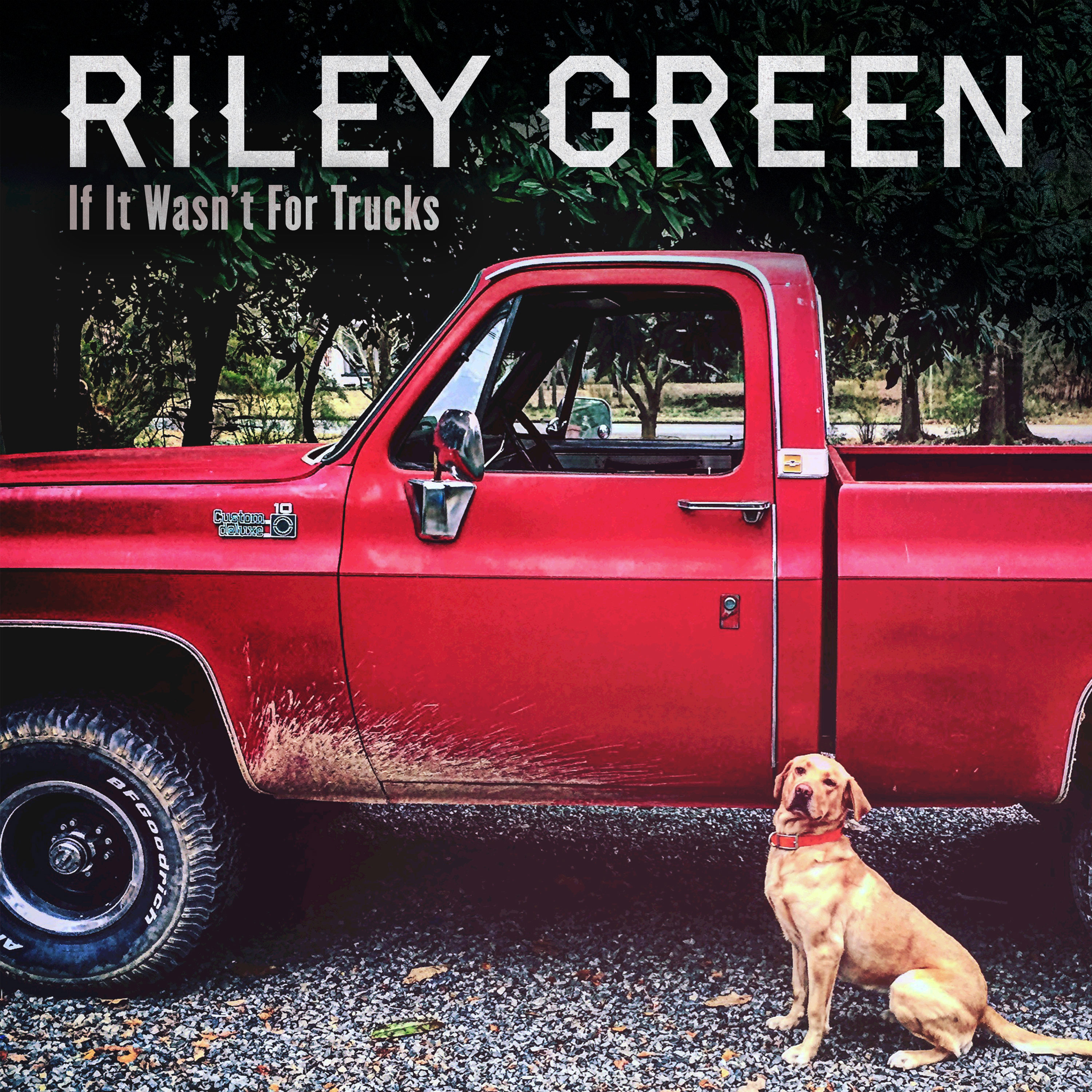 riley-green-if-it